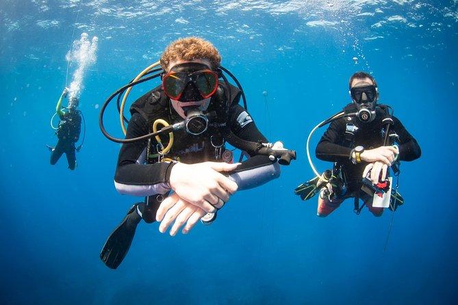 Discover Scuba Dive - OCEAN EXPERIENCE (1 Tank Dive)