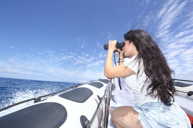 Whale Watching and Marine Science Tour