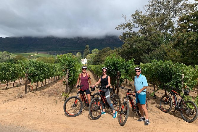 Constantia Valley and Winelands tour