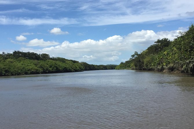 Costa Rican Wildlife: Palo Verde National Park Private Tour