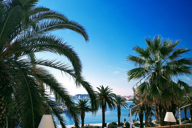 Split Like a Local: Private tours in English and Spanish
