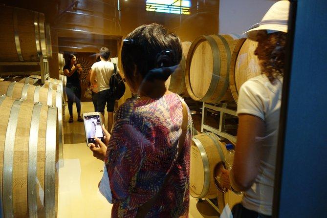 Private Wine Tour - Colonia Caroya