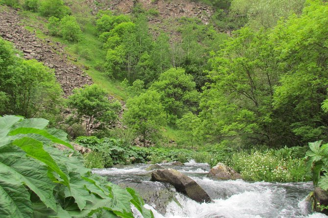 Trip to Dashbashi Canyon and Azeula fortress (BBQ in the forest)