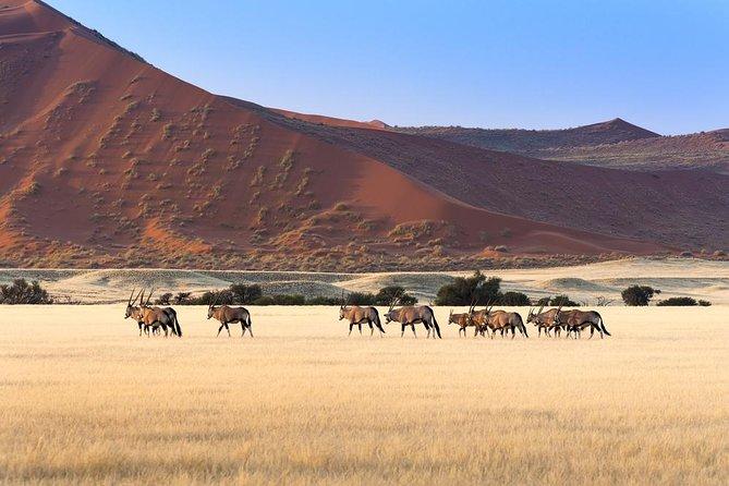 10 Days Namibia key highlights Lodging