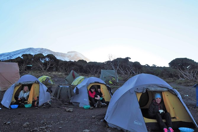 Mount Kilimanjaro Umbwe Route photo 3