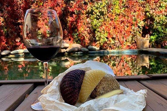 Food and wine tasting tour