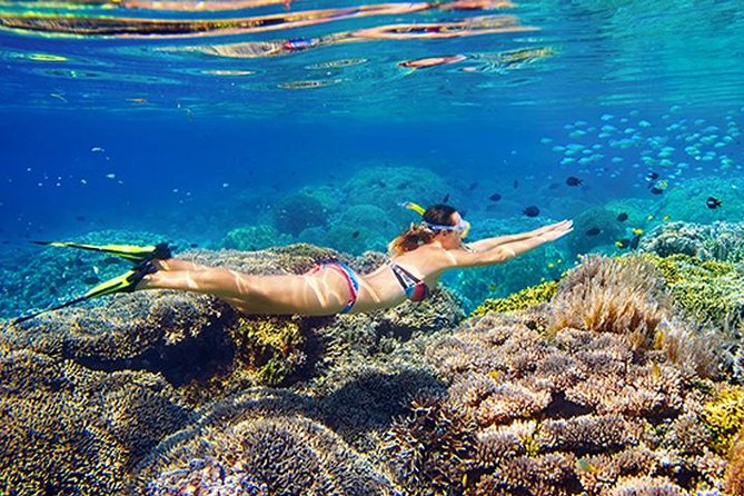 All Inclusive Snorkeling Tour at Blue Lagoon, East Bali