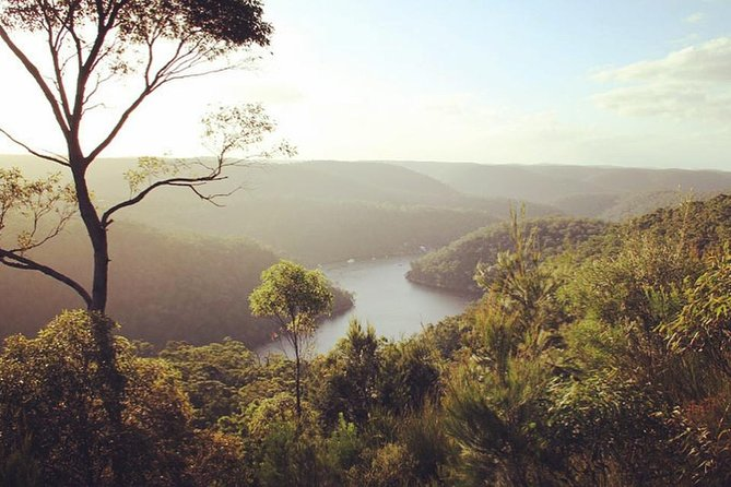 2 nights in Berowra Valley