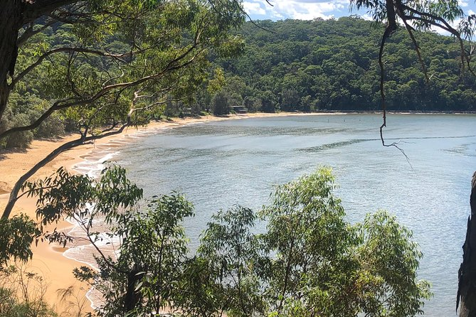 5 day Kayak Adventure down Hawkesbury River