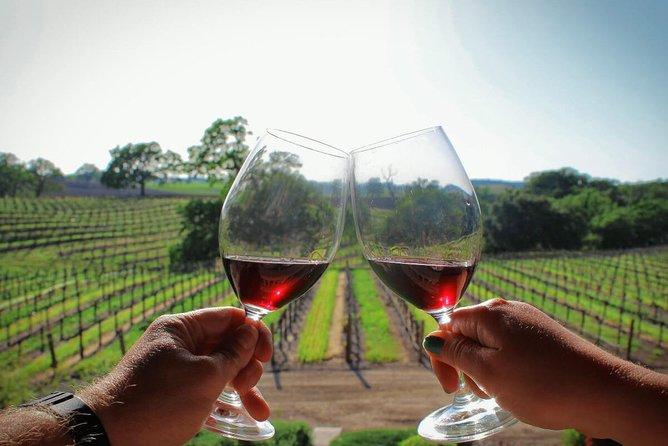 Cape Winelands Tour including Stellenbosch, Franschoek and Paarl