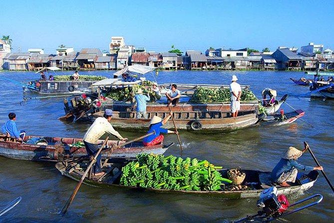Small Group Day Tour Mekong Delta - Cai Be Floating Market - Tan Phong Island