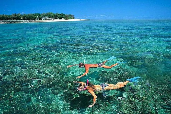 Cham Islands Full-Day Tour: Speed Boat, Lunch, Snorkeling and Beach