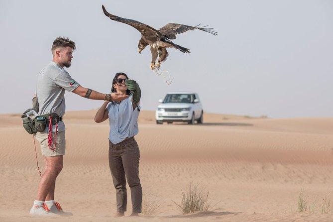 Private Falconry Experience and Wildlife Desert Safari in Range Rovers Dubai