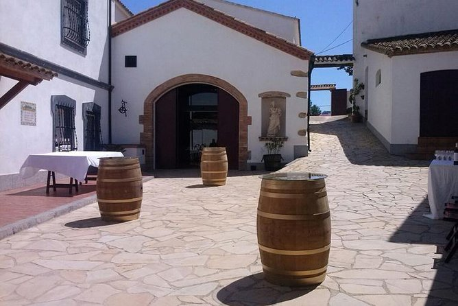 winery tour and grilled menu in guardiola de font-rubi