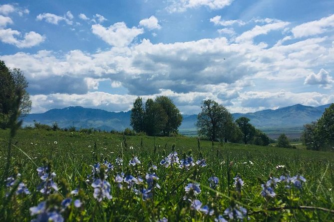 All-inclusive 3-Day tour in Transylvania Relax package photo 9