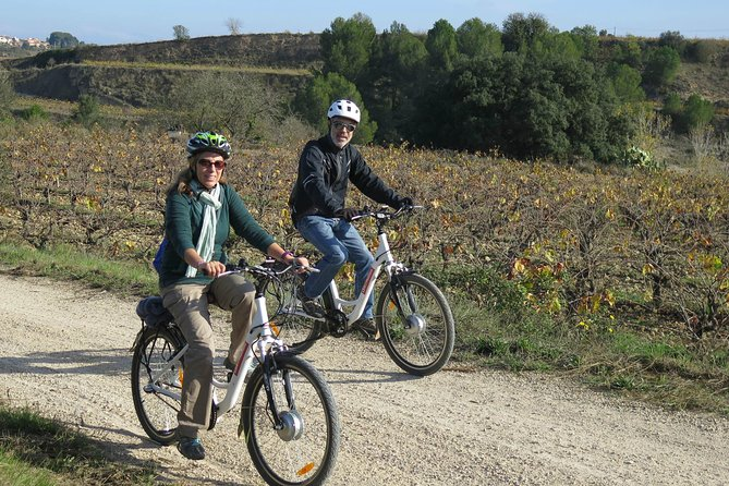 Electric Bicycle Route And Wine Tasting