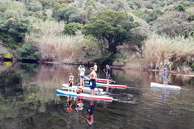 Guided 2-3hour stand up paddling and river trips on the keurbooms river