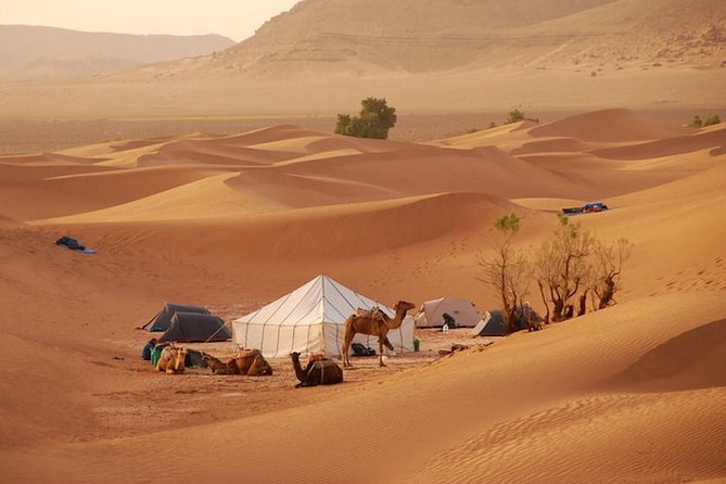 Agadir / Zagora Tour 2 days 1 night in nomadic tents
