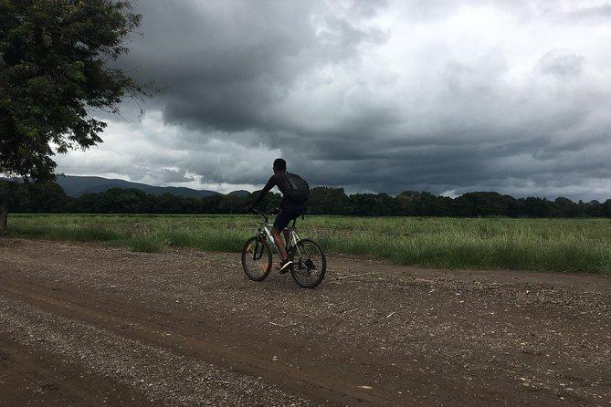 Cycling through the TPC plantations