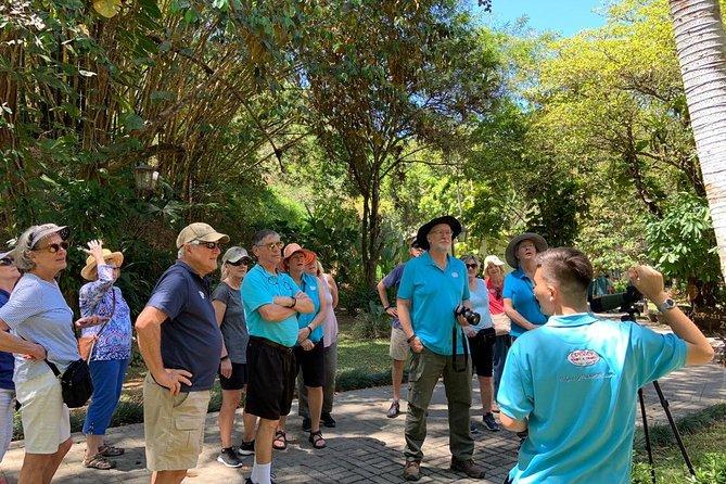 10 in 1 Puntarenas Highlights tour