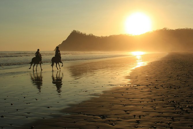 Safari & Buenavista Beach Horse Riding Tour
