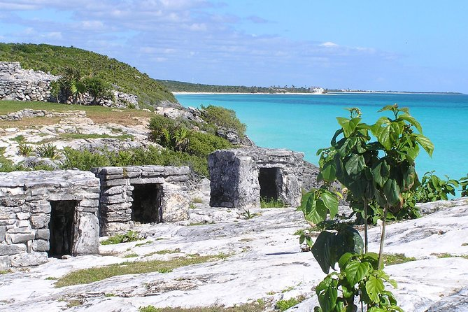 Coba and Tulum and Cenote and Playa del Carmen all in one 4X1 the most wanted!! photo 30