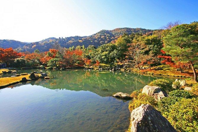 Kyoto de Osaka: Imersivo Arashiyama e Fushimi Inari por veículo particular