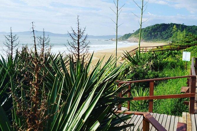 Balneário Emerald Coast Day Tour