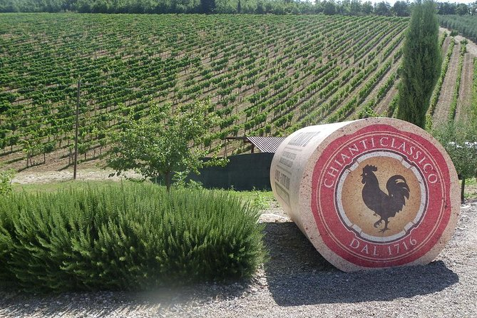 Essence of Chianti Small Group Tour with Lunch and Tastings from Florence