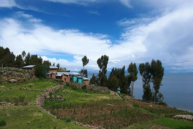 Uros and Taquile Island Full Day Tour from Puno photo 3