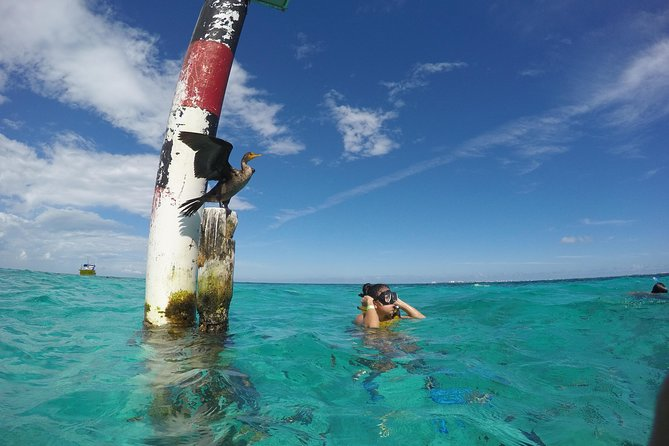 Snorkel and Parasail Cancun