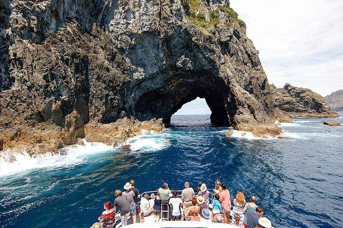 Excursão de 3 dias à Baía das Ilhas saindo de Auckland, incluindo Waitangi e Cape Reinga