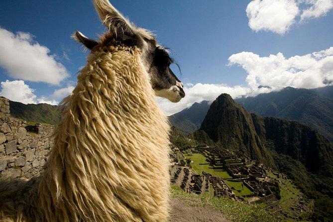The Inca Trail: 4-Day Trek to Machu Picchu