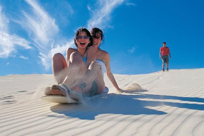 Pinnacles Desert, Koalas, and Sandboarding 4WD Day Tour from Perth photo 4