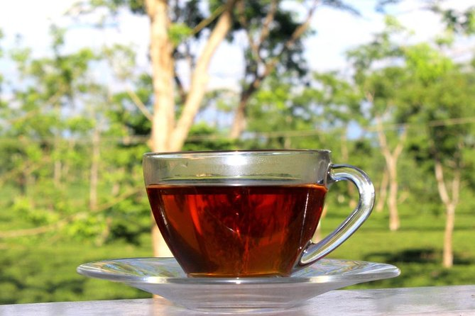 Dibrugarh Tea Garden Tour and Singpho tribal village visit with Lunch