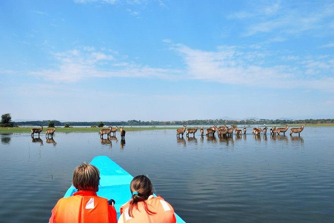 4 Days Special Lake Naivasha - Masai mara safari