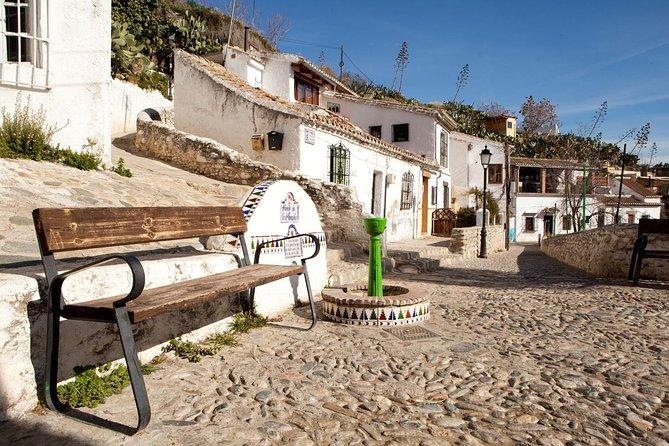 Granada: Excursão Privada Sacromonte