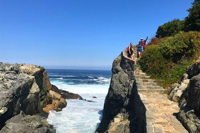 Pacific Ocean Hike Private Tour 7K