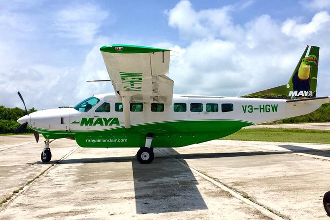 Dangriga Airport To Hopkins Village