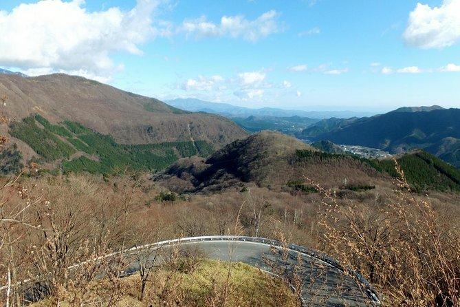 Private Tour to Nikko Scenic Spots and UNESCO Shrine