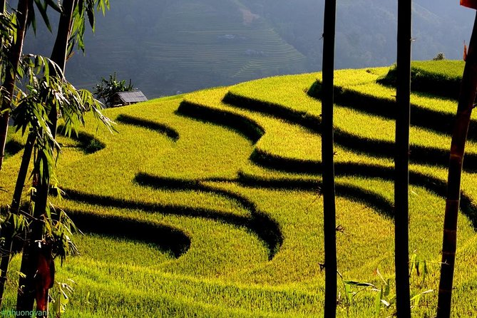 Discovery the northern Vietnam - A majestic Ha Giang