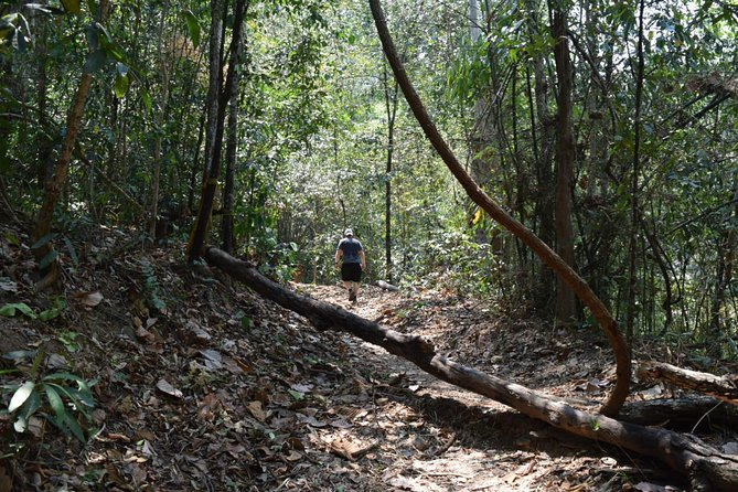 Half Day Doi Suthep Temple and short trekking on monk trail (Private Tour)