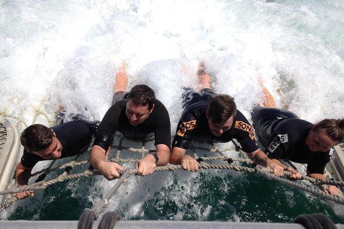 Eco Marine Safari - Boom netting & Snorkeling Moreton Island - Roma St Transfers