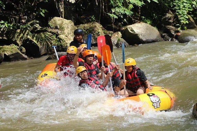 Ubud Adventure : Rafting & Bali Jungle Swing - Free WiFi