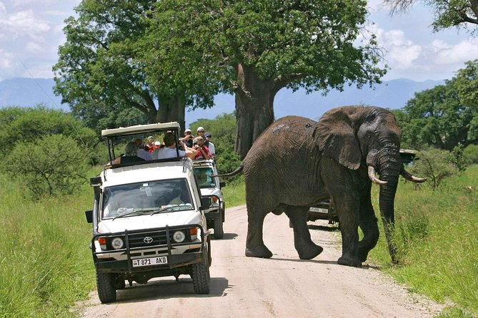 PRIVATE Day Trip to Tarangire National park