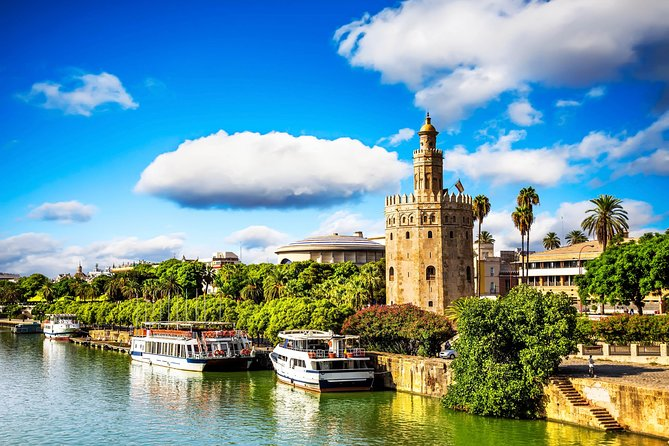 From Malaga Port: Private Tour to Seville (cruise passengers)
