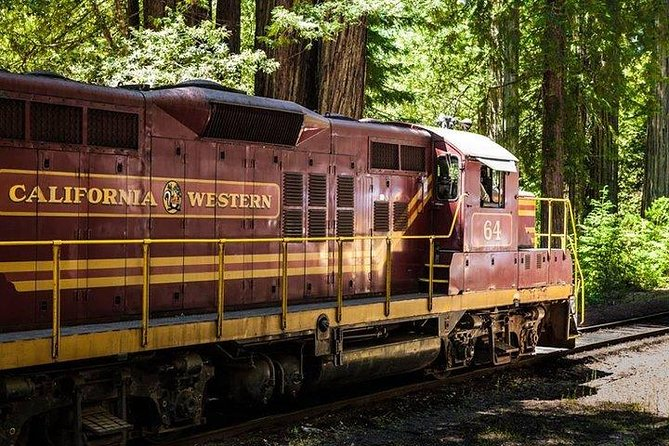 Skunk Train: Wolf Tree Turn from Willits