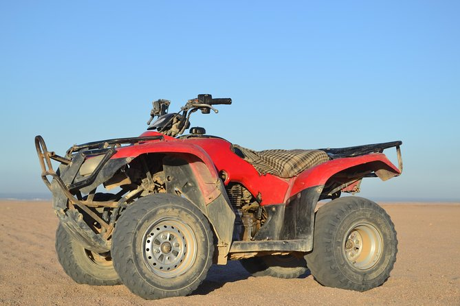 Super Safari Quad Bike & Bedouin and Camel Ride - Sharm El Sheikh