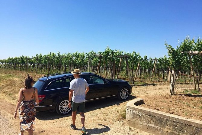 Wine Tour and Light Lunch Salento and Puglia