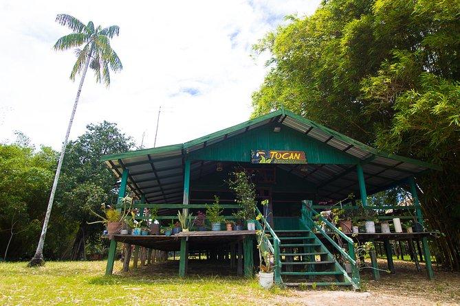 Um gostinho da Amazônia 2D / 1N Tour-No Tucan Amazon Lodge